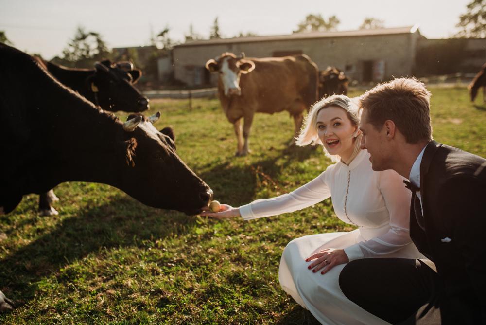 sesja ślubna na wsi